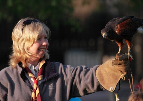 Falconry fun with friends and family
