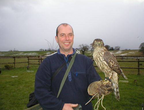 A unique falconry gift for Father's Day!